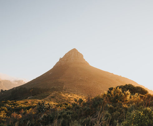 Western Cape Government Drupal Website
